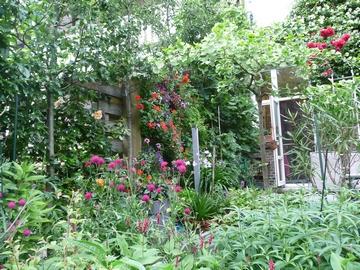 Volop bloemen in de border op de voorgrond en in de verticale tuin rondom het terras.
