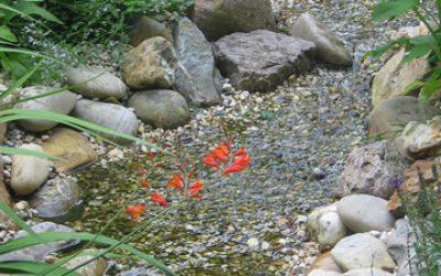 Tuin bij vrijstaand woonhuis in Voorthuizen (1)